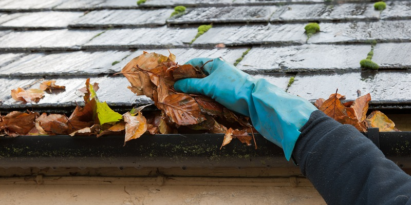 Gutter Cleaning Service in Sacramento