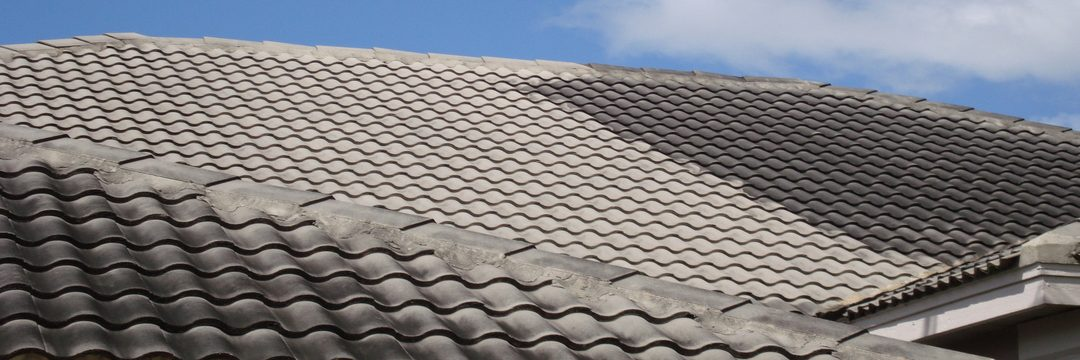 Chemical Roof Wash - Monsters Gutter